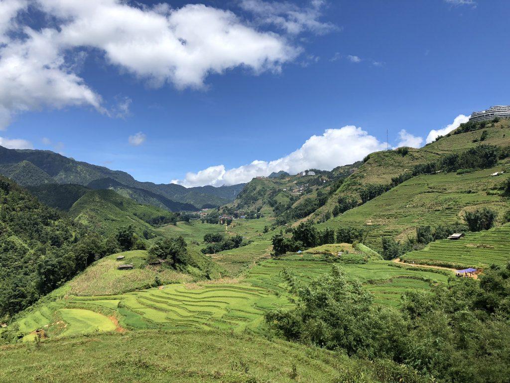 Campos de arroz de Sapa