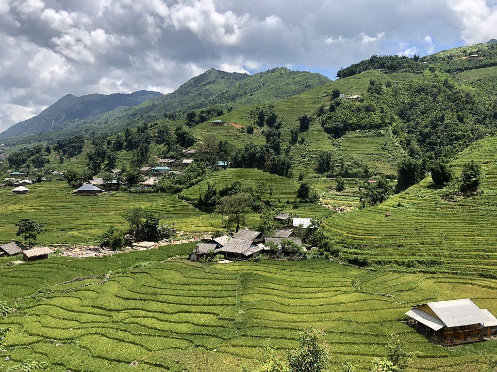 Campos de arroz vistos desde Ta Van